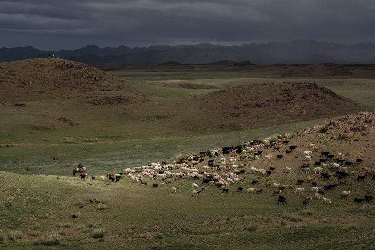 Mongolia-31
